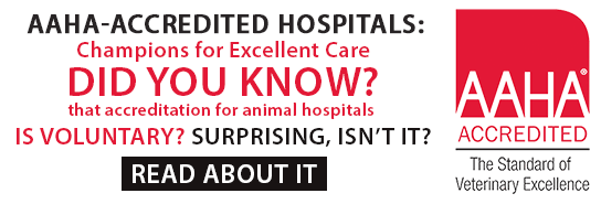 AAHA-Accredited Hospitals: Champions for Excellent Care banner
