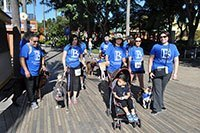 Dr. Arambulo Photos Lakewood - 2015 K9 cancer walk 03