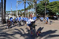 Dr. Arambulo Photos Lakewood - 2015 K9 cancer walk 04