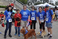 Dr. Arambulo Photos Lakewood - 2015 K9 cancer walk 06