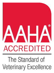 Pet skin Care Lakewood - AAHA Accredited