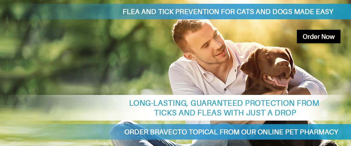 Order Bravecto topical from Bloomfield Animal Hospital online pet pharmacy