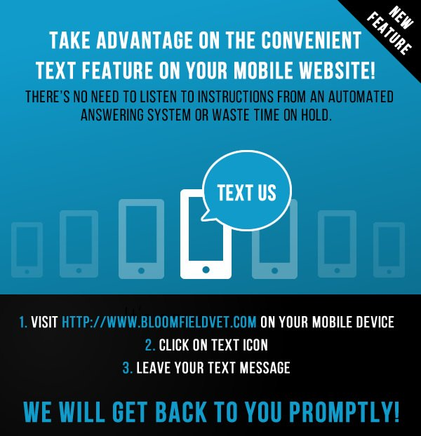 Text Message Service Banner